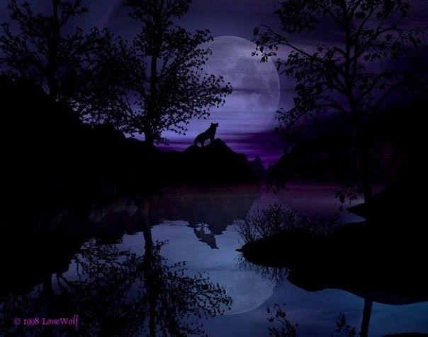 Озеро одиноко волка  68607421